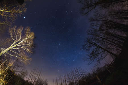 soul searching: Fisheye view of the starry sky with blurred motion clouds, captured from sparse beech woodland. Orion and Twin constellation in the center. Jupiter on the upper left. Scenic distortion and 180� view. Stock Photo