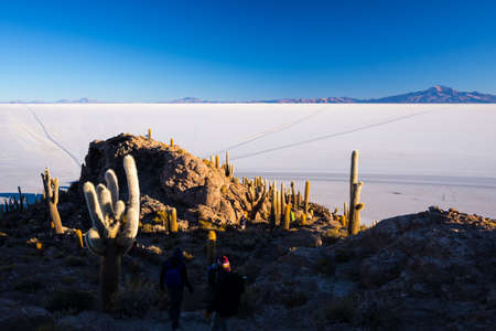 incahuasi: Tourists roaming on the summit of the Incahuasi Island at sunrise. Expansive view of the Uyuni Salt Flat, among the most important travel destination in Bolivia.