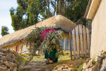 peruvian ethnicity: Hard rural life on the barren mountains of the Island of the Sun, Titicaca Lake, Bolivia. About 800 families live on the island. They speak Aymara and Quechua language.