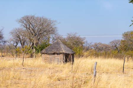 Mud straw and wooden hut with thatched roof in the bush. Local village in the rural Caprivi Strip, the most populated region in Namibia, Africa. Stock Photo