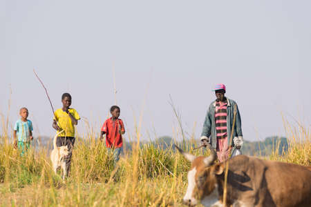 Ngoma, Namibia - August 16, 2016: Hard rural life in the African Savannah. Young and adult shepherds in the rural Caprivi Strip, the most populated region in Namibia, Africa.