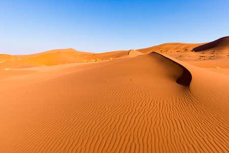 Toneelruggen van zandduinen in Sossusvlei, het Nationale Park van Namib Naukluft, beste toerist en reisaantrekkelijkheid in Namibië. Avontuur en verkenning in Afrika. Stockfoto