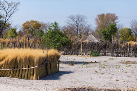 thatched roof: Mud straw and wooden hut with thatched roof in the bush. Local village in the rural Caprivi Strip, the most populated region in Namibia, Africa.