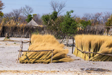 Mud straw and wooden hut with thatched roof in the bush. Local village in the rural Caprivi Strip, the most populated region in Namibia, Africa.