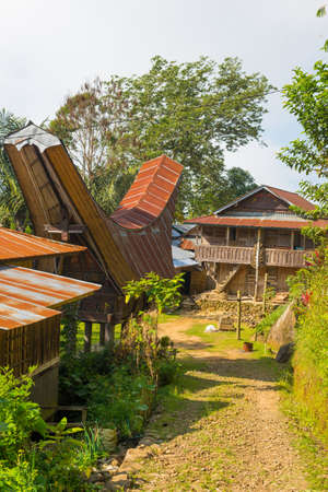 Traditional village of residential buildings with decorated facade and boat shaped roofs. Tana Toraja, South Sulawesi, Indonesia. Stock Photo