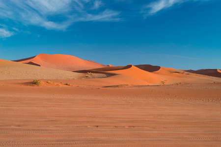 Sand dunes in the Namib desert at dawn, roadtrip in the wonderful Namib Naukluft National Park, travel destination in Namibia, Africa. Morning light, mist and fog.   Stock Photo