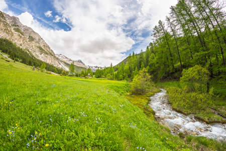 bardonecchia: Flowing transparent waters on high altitude alpine stream in idyllic uncontaminated environment in the Italian French Alps. Ultra wide angle view. Stock Photo