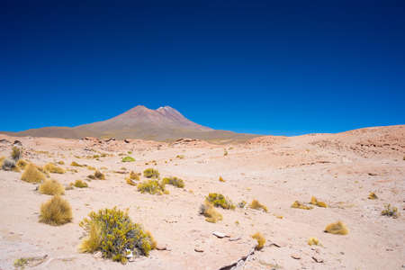 Rocky desert and steaming volcano in the distance, on the Andean Highlands, among the most important travel destination in Bolivia. Clear sky in daylight.