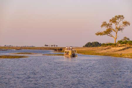 Boat cruise and wildlife safari on Chobe River, Namibia Botswana border, Africa. Chobe National Park, famous wildlilfe reserve and upscale travel destination.
