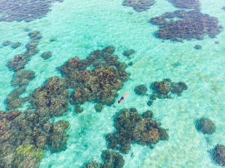 Aerial top down people snorkeling on coral reef tropical caribbean sea, turquoise blue water. Indonesia Wakatobi archipelago, marine national park, tourist diving travel destination