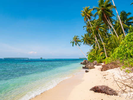 White sand beach with coconut palm trees turquoise blue water coral reef, tropical travel destination, desert beach no people - Banyak Islands, Sumatra, Indonesia