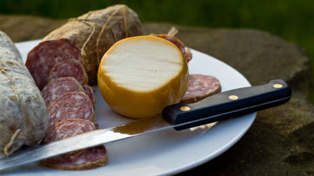 Traditonal italian salami with cheese shot in natural light. Selective focus on cheese.