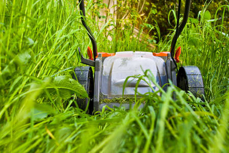 Close-up of a lawnmowner cutting long grass Stock Photo