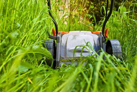 Gros plan d'un lawnmowner coupe l'herbe longue