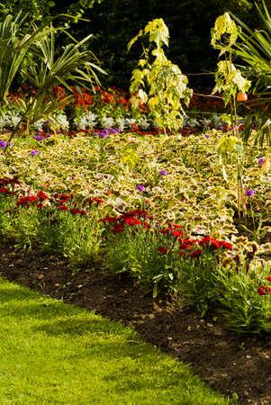 Beau jardin anglais autour du ch�teau de Guildford. Juin 2008.