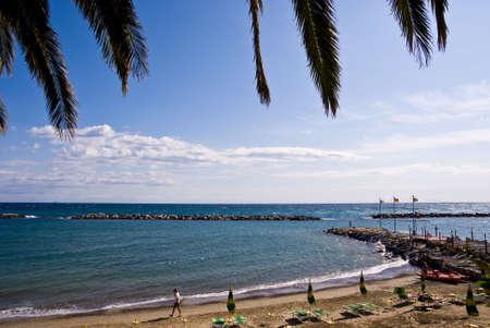 Palm fronde contre l'Italien plage