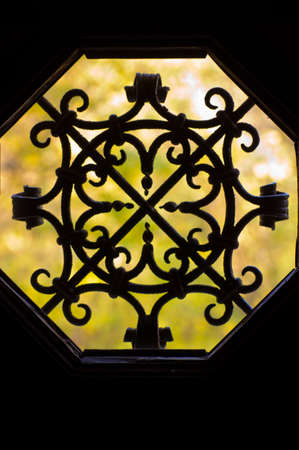 Wrought iron grid decoration on a door photo