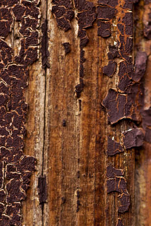 Surface of an old and worn wooden door photo
