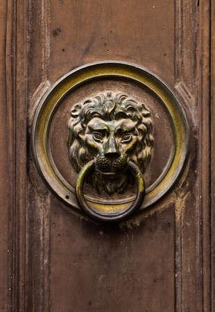 doorknocker: Lion door knocker