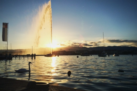 Geneva lake and fountain at sunset