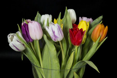 Bouquet of colorful tulips in a glass vase, on black background.