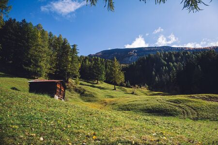 Meadow, chalet, forest and mountains landscape in the Swiss alps.