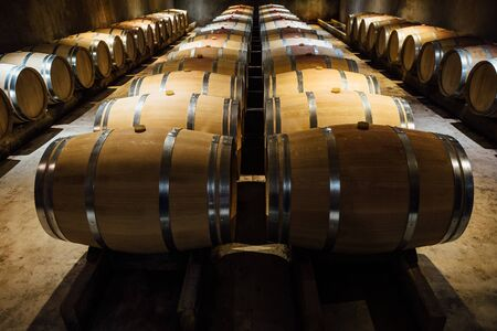 A wine maturing cellar, with aligned oak barrels. Stock Photo