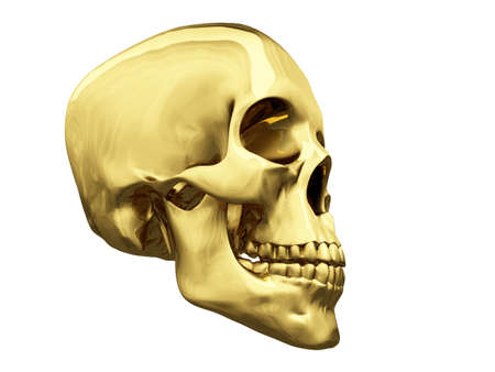 isolated gold skull over white photo
