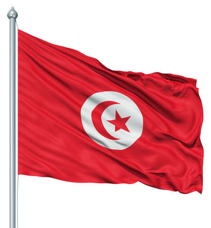 flutter: Realistic 3d flag of Tunisia fluttering in the wind