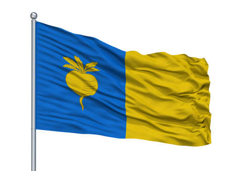 Sint Niklaas City Flag On Flagpole, Country Belgium, Isolated On White Background