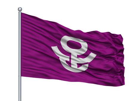 Adachi City Flag On Flagpole, Country Japan, Tokyo Prefecture, Isolated On White Background