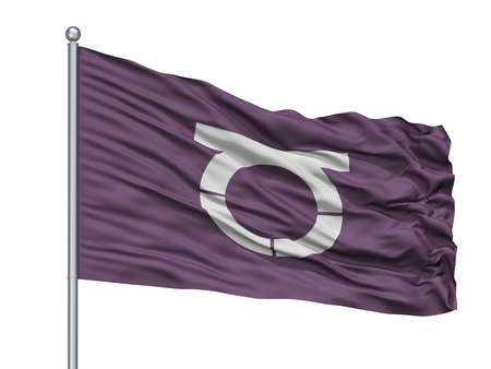 Takeo City Flag On Flagpole, Country Japan, Saga Prefecture, Isolated On White Background