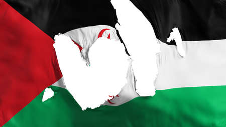 Ragged Sahrawi Arab Democratic Republic flag, white background, 3d rendering