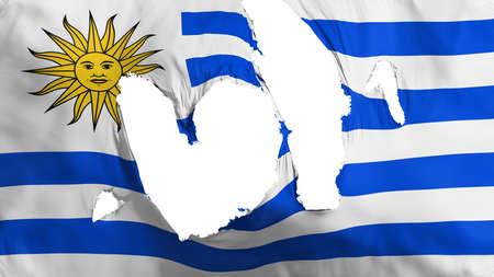 Ragged Uruguay flag, white background, 3d rendering