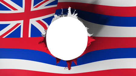 Hole cut in the flag of Hawaii state, white background, 3d rendering