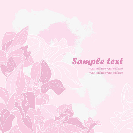 pink orchid: Vector card  Pink orchid  Illustration