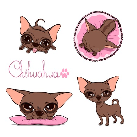 Cartoon Illustration of a Cute Chihuahua Illustration
