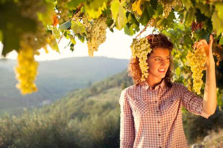 日没の光の下でブドウを収穫する女性 写真素材