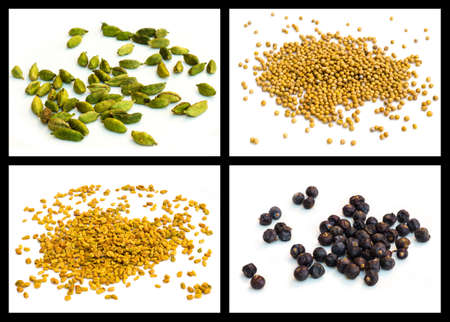 spice powder of Yellow mustard seed, seed of hay greek, cardamom, juniper photo