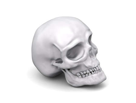 Human skull Stock Photo - 133375559
