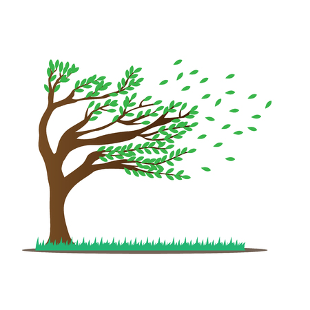Tree with leaves. Tree isolated on white background. Green tree blown by the wind. Illustration