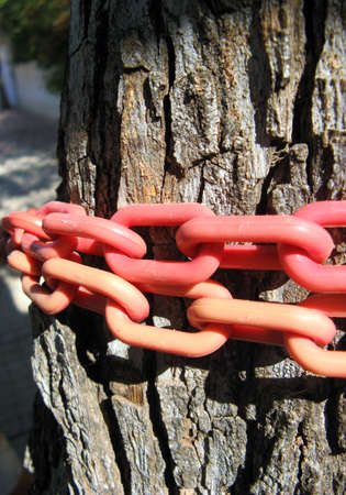 tiedup: Pink chain tied-up on tree trunk Stock Photo