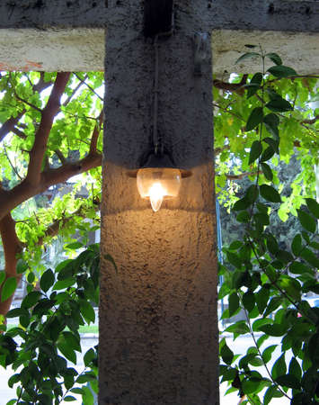 bulp: An old lamp attached on a wall between plants and trees on a terrace