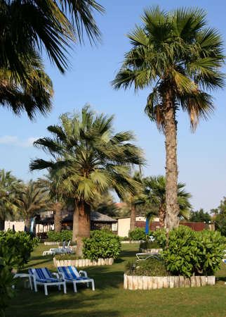 A view in the park of a summer resort