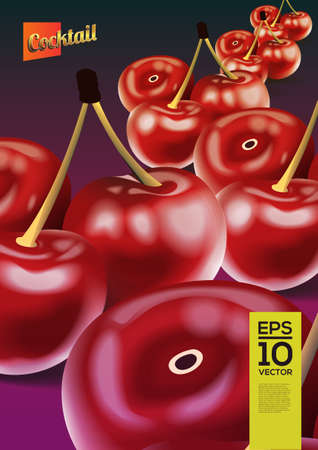 Beautiful vector graphic illustration of  cherrys on grey background Vector