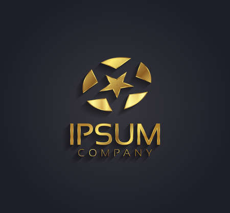 triplets: Vector graphic golden star symbol for your company with sample text