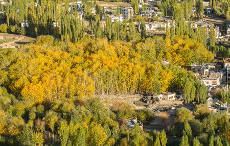 Leh - Ladakh landscape