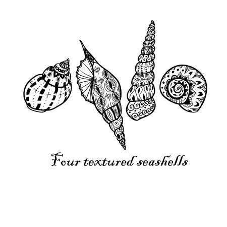 seashell: Four doodle black textured seashells. Inky style. Illustration