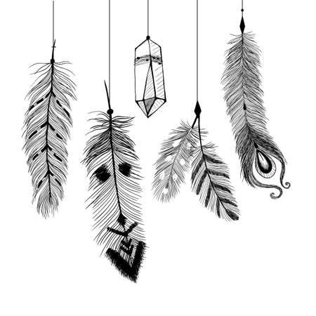 bird feathers: Detailed feathers in boho style.