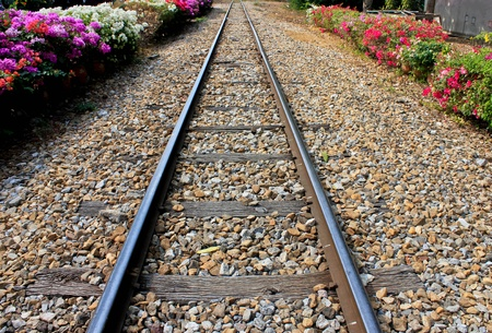 express lane: Railway rail in a small railway station, decorated with flowers two side. Stock Photo